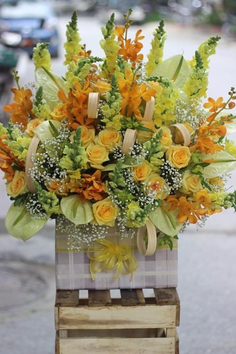shop hoa tươi Thành phố Gia Nghĩa
